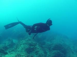 צלילה חופשית בישראל